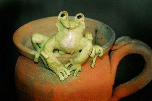 frog-mug-fried-mudd